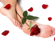 Feet and Rose